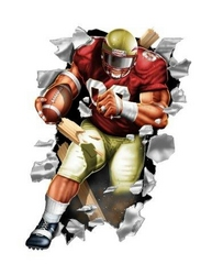 Florida State Seminoles Wallcrasher Wall Decal - Football 11""